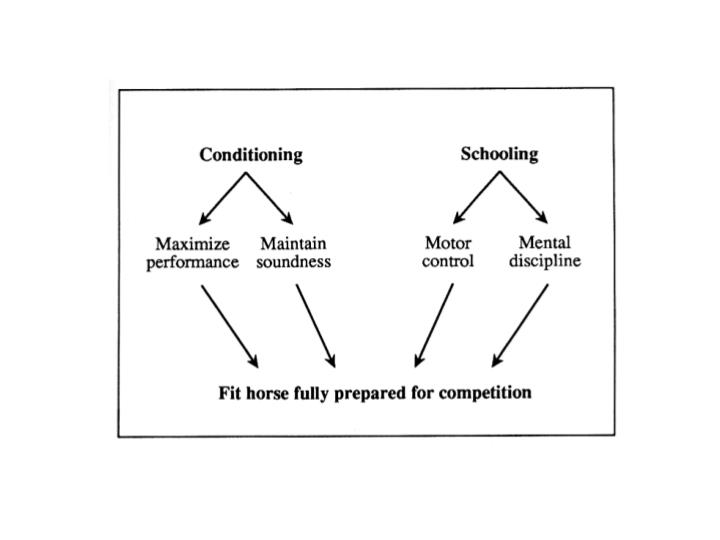 Conditioning programs are directed towards