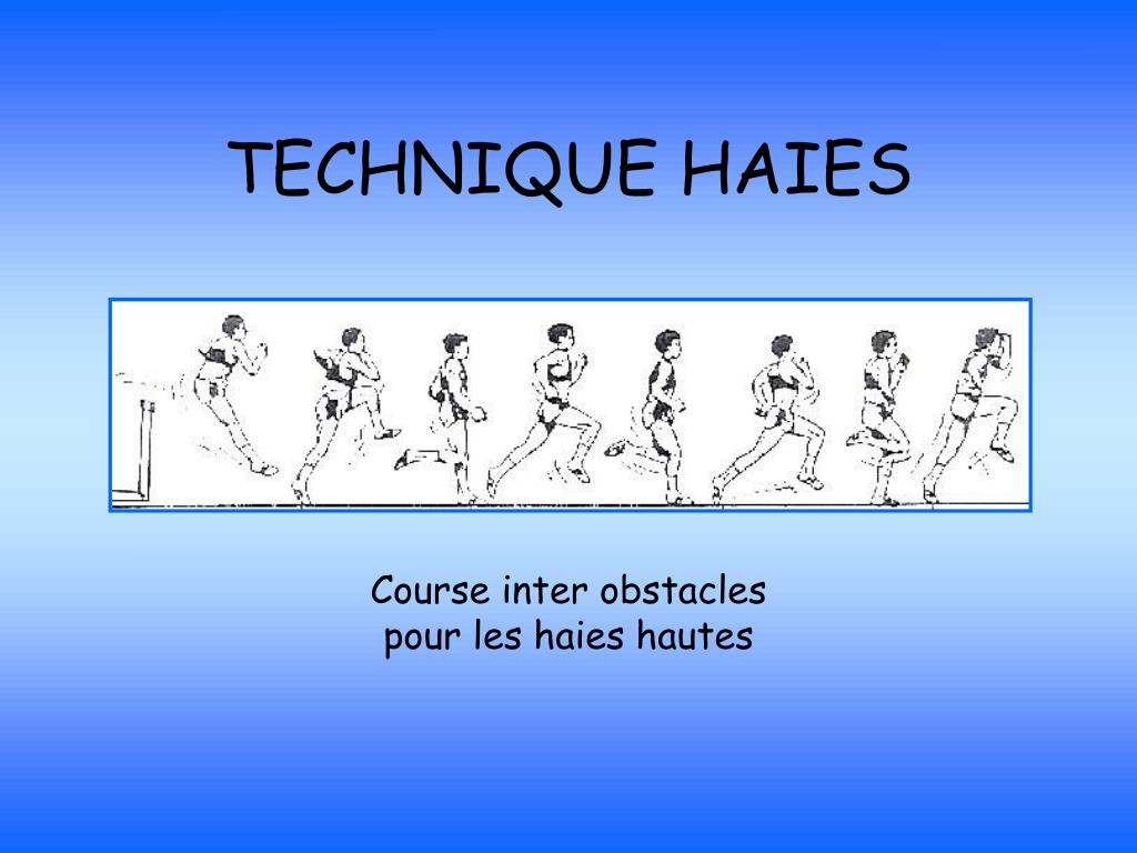 TECHNIQUE HAIES
