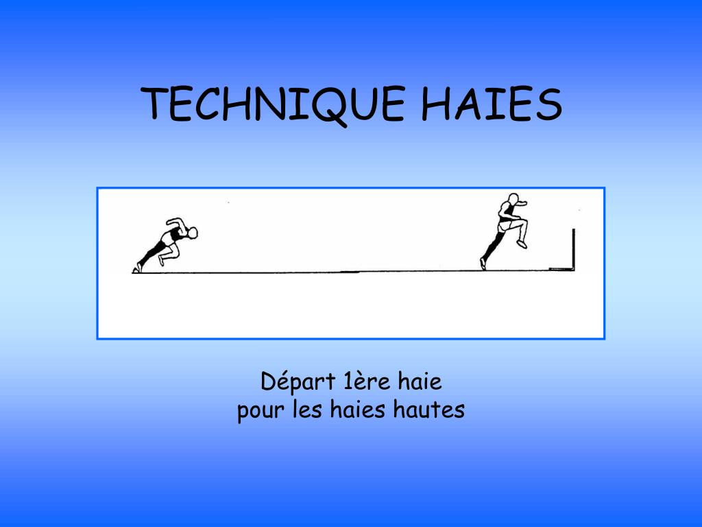 TECHNIQUE HAIES