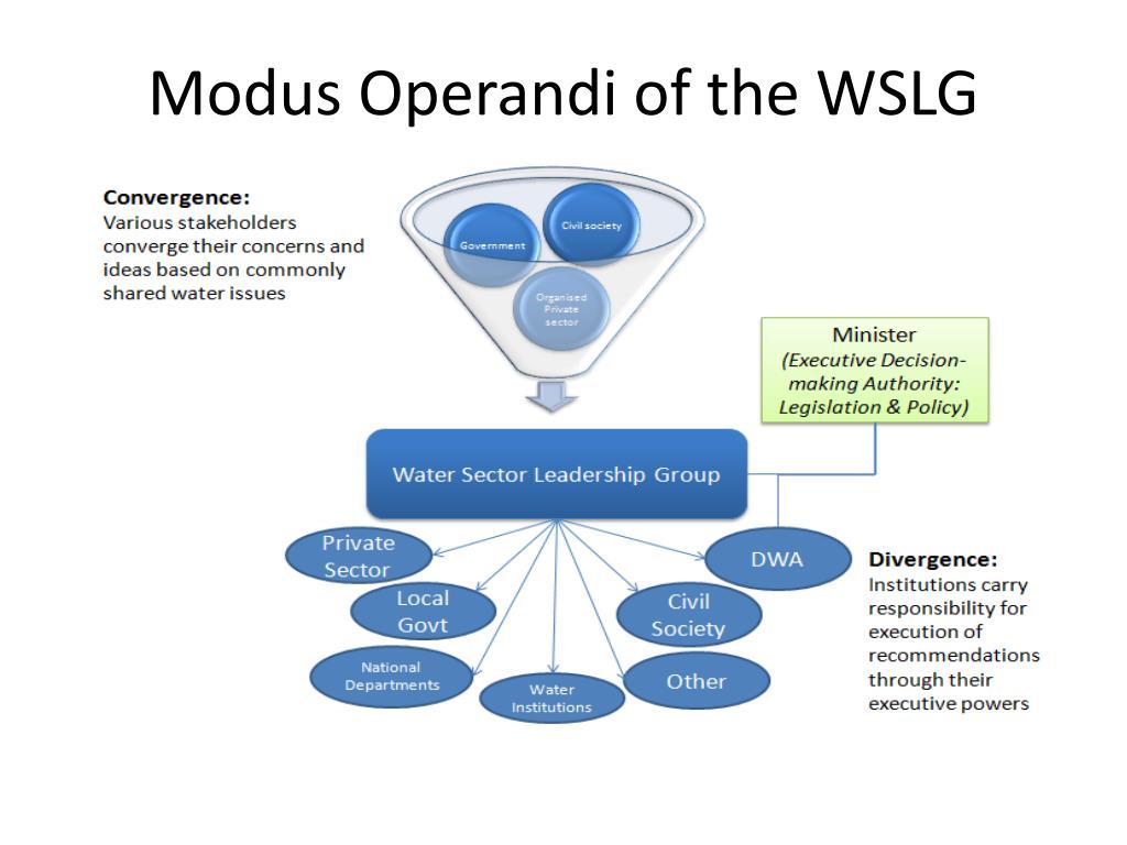 Modus Operandi of the WSLG