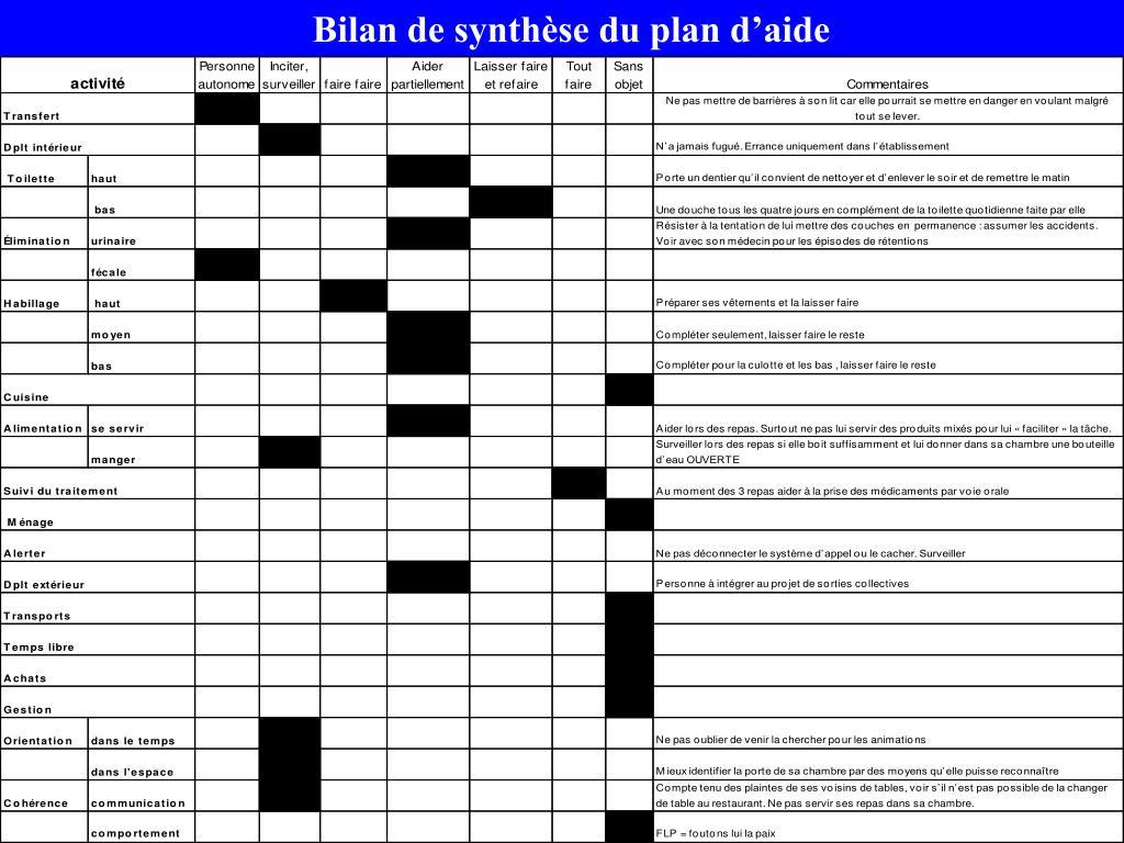 Bilan de synthèse du plan d'aide