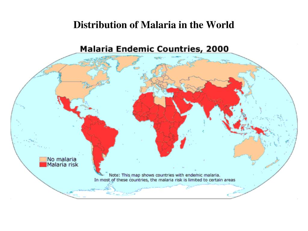 Distribution of Malaria in the World