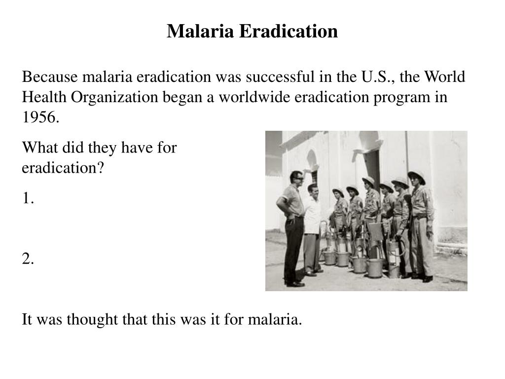 Malaria Eradication
