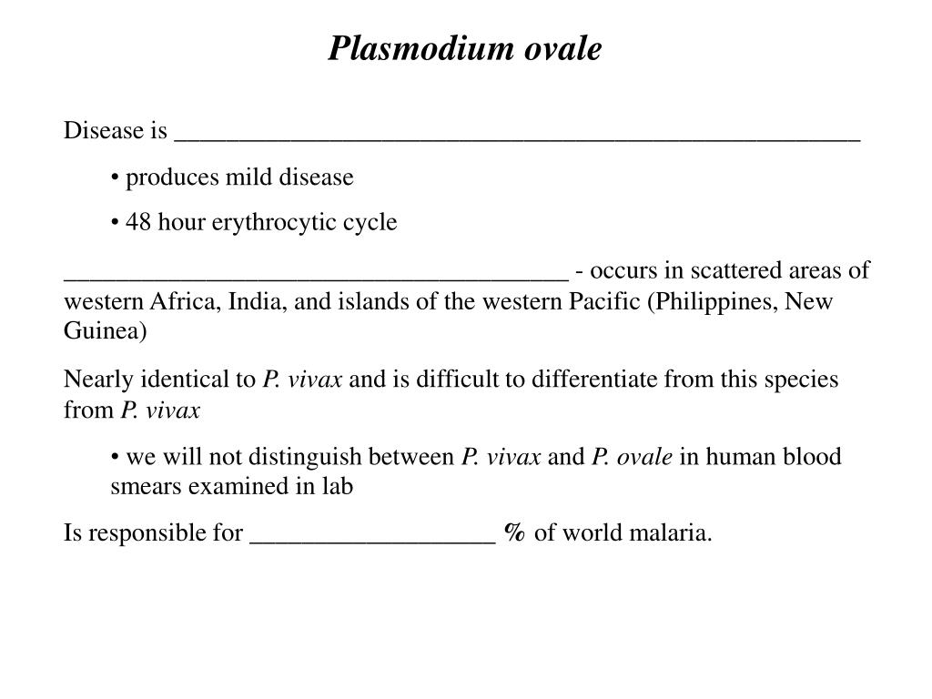 Plasmodium ovale