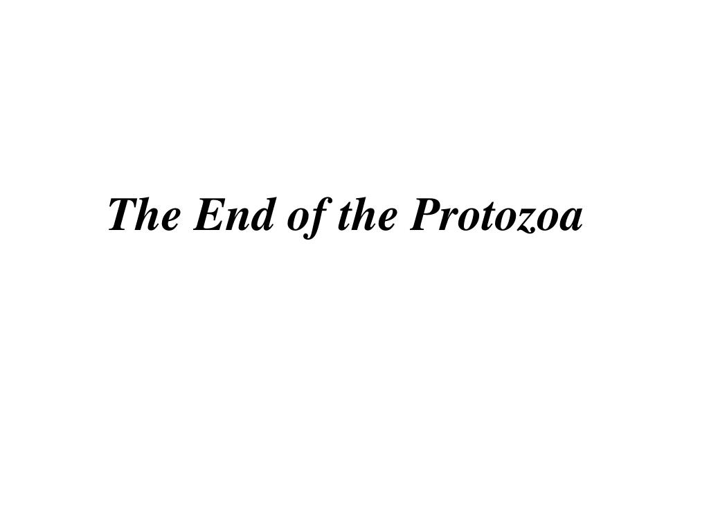 The End of the Protozoa