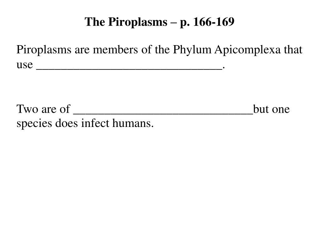 The Piroplasms – p. 166-169