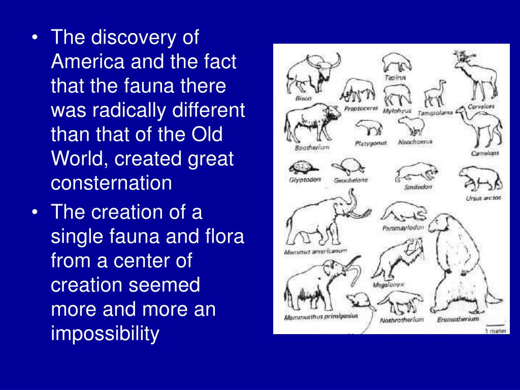 The discovery of America and the fact that the fauna there was radically different than that of the Old World, created great consternation