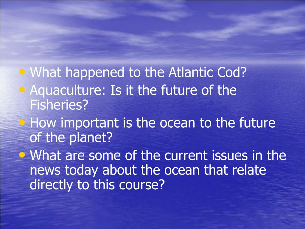 What happened to the Atlantic Cod?