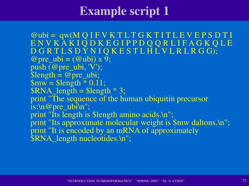 Example script 1