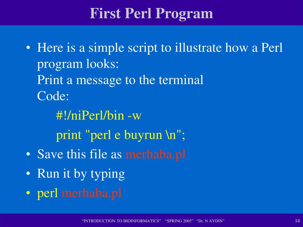First Perl Program