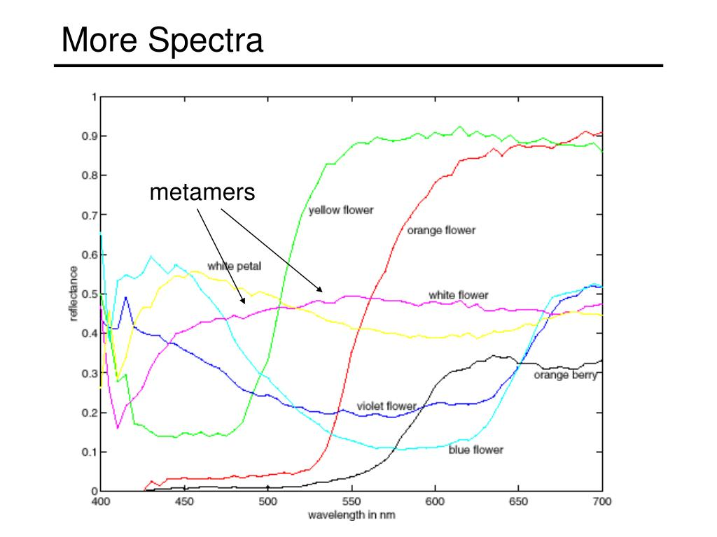 More Spectra