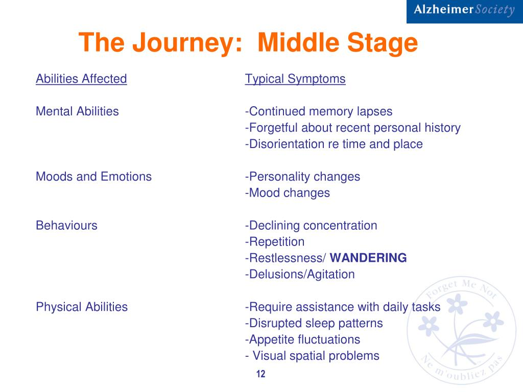 The Journey:  Middle Stage