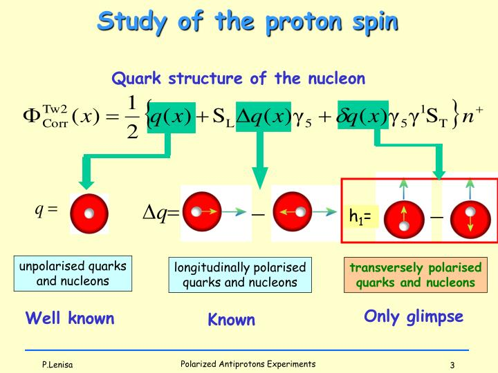 Study of the proton spin
