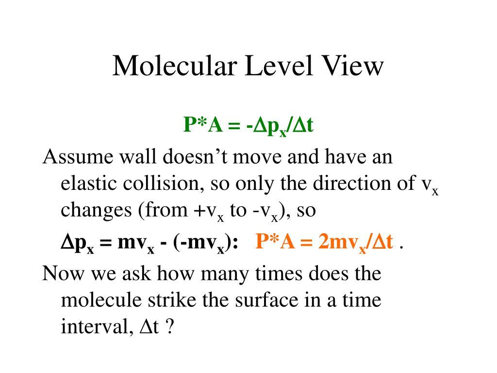 Molecular Level View