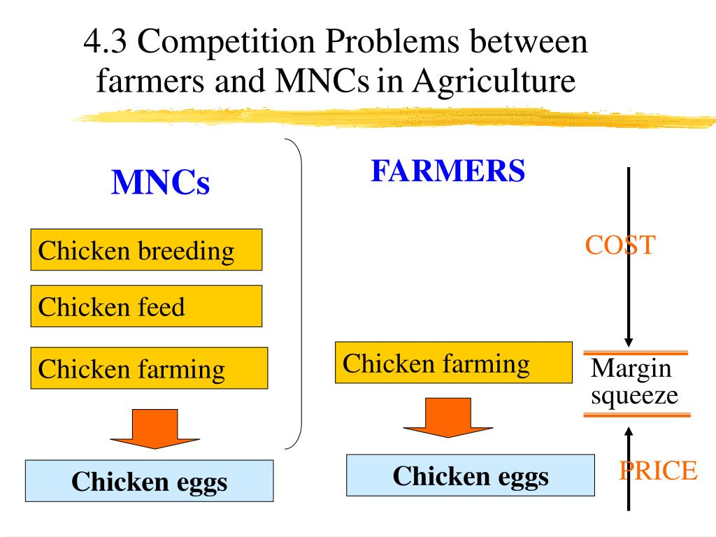 4.3 Competition Problems between farmers and MNCs