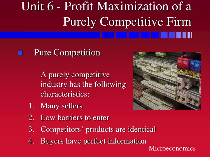Unit 6 profit maximization of a purely competitive firm2 l.jpg