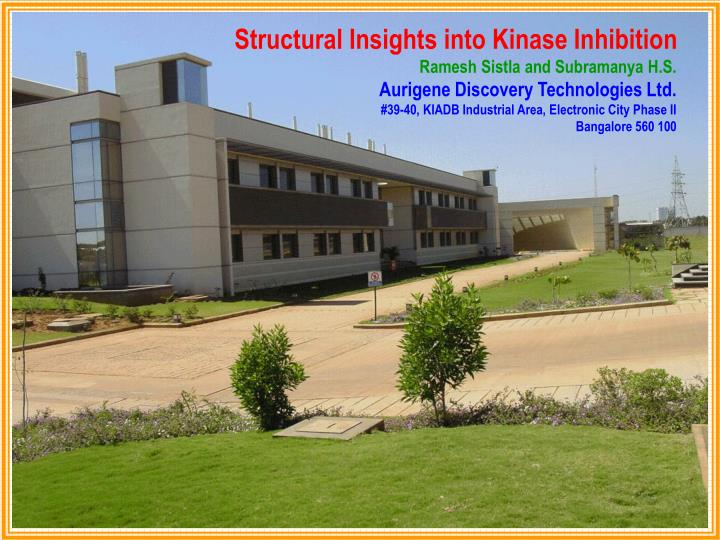 Structural Insights into Kinase Inhibition