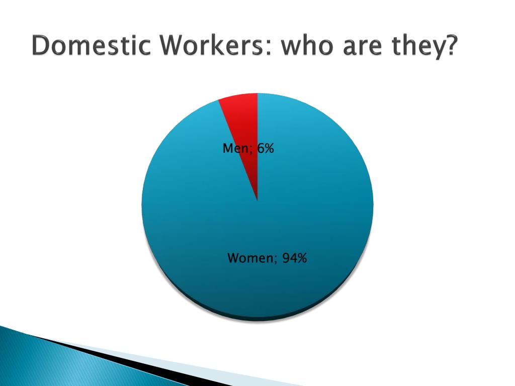 Domestic Workers: who are they?