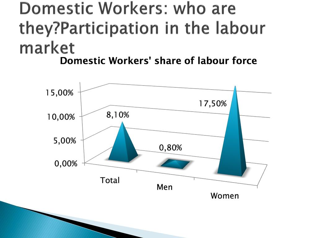 Domestic Workers: who are