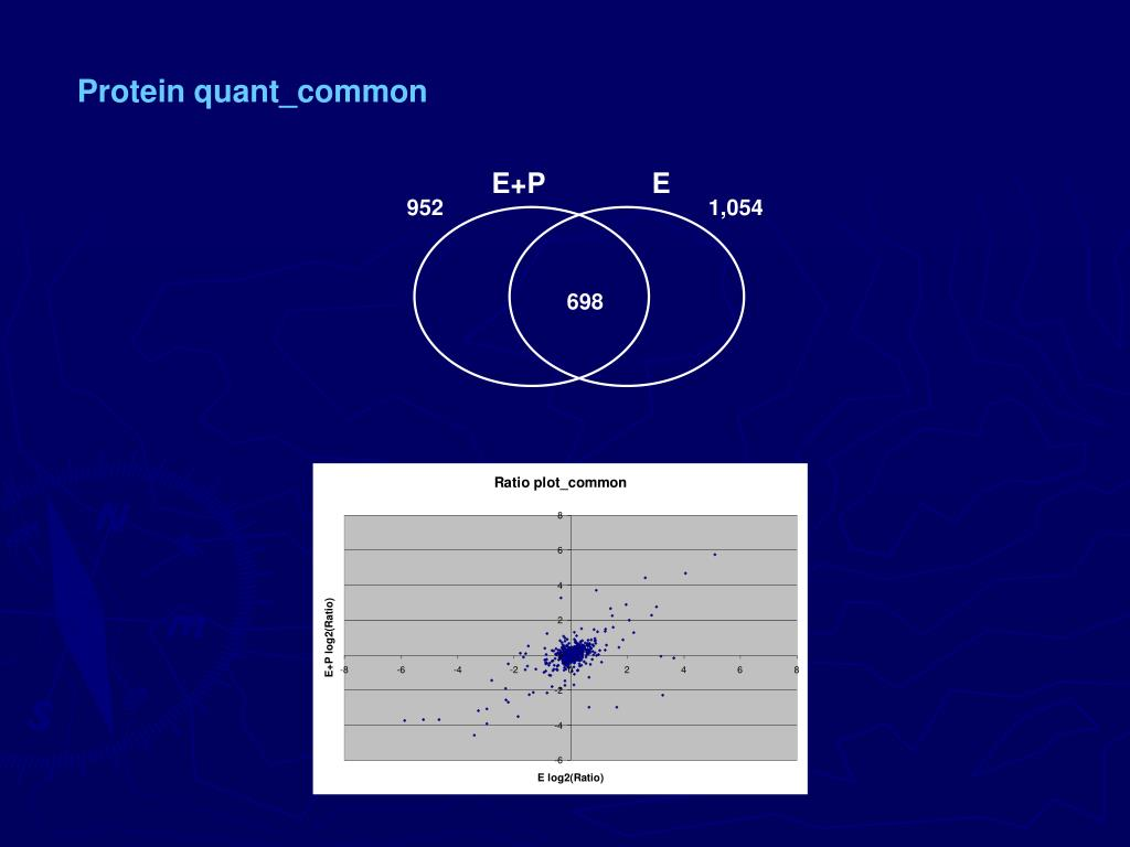 Protein quant_common
