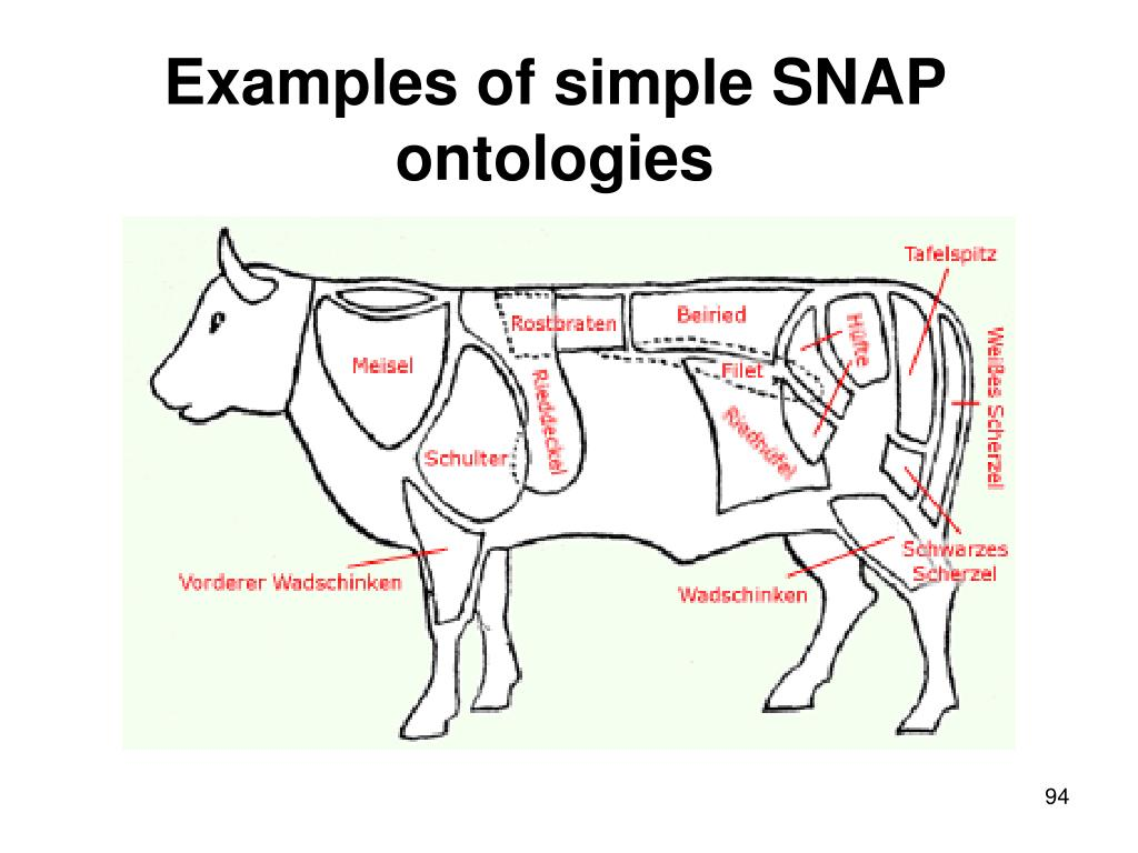 Examples of simple SNAP ontologies