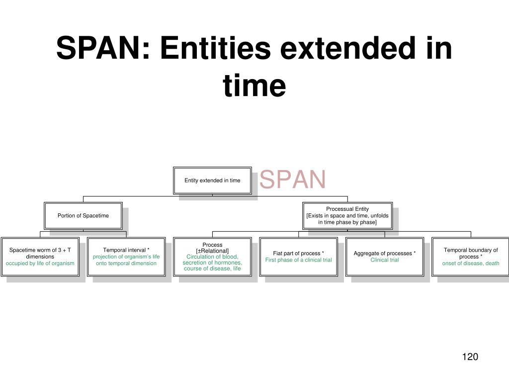 SPAN: Entities extended in time