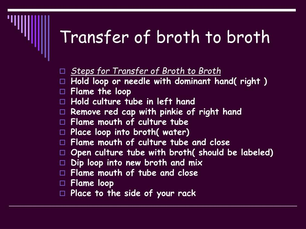 Transfer of broth to broth
