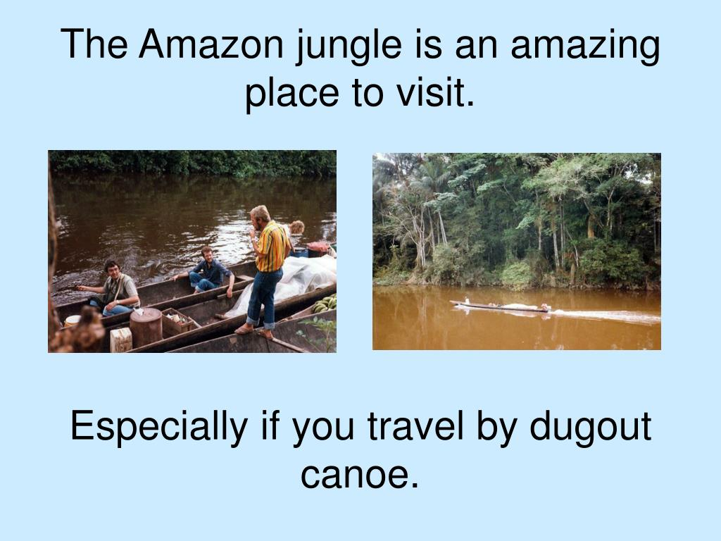 The Amazon jungle is an amazing place to visit.