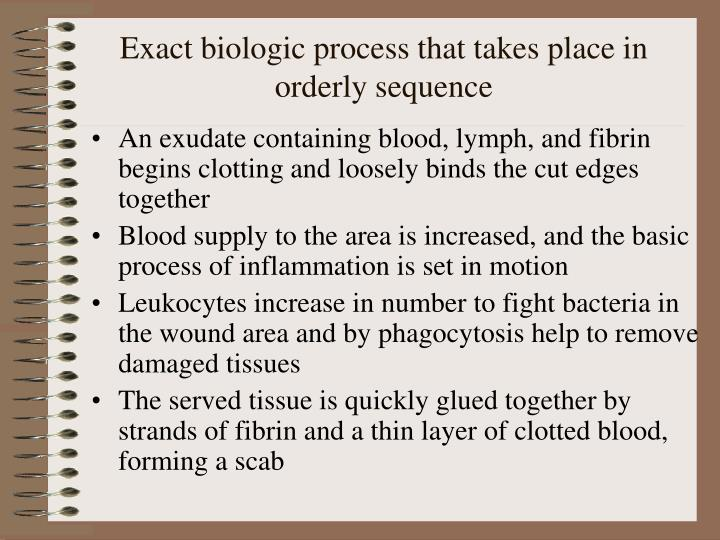 Exact biologic process that takes place in orderly sequence l.jpg