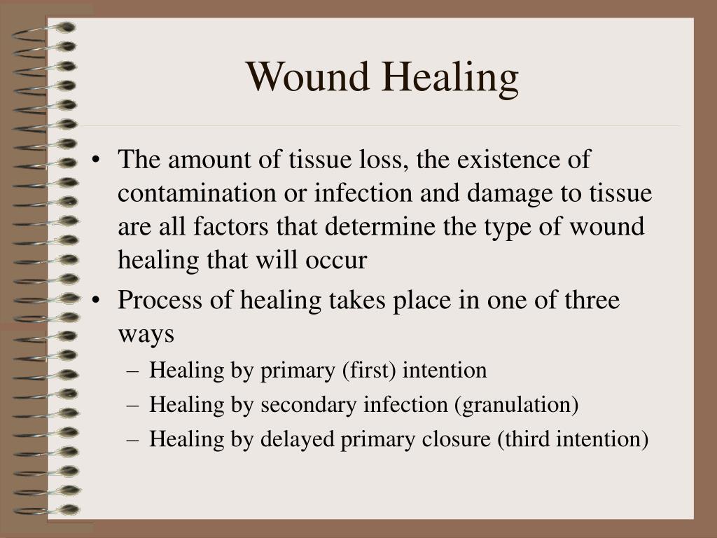 Wound Healing