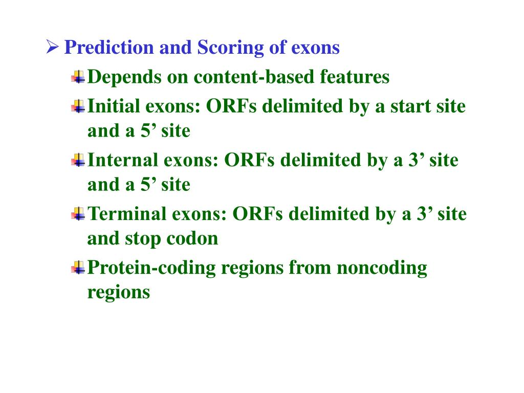 Prediction and Scoring of exons
