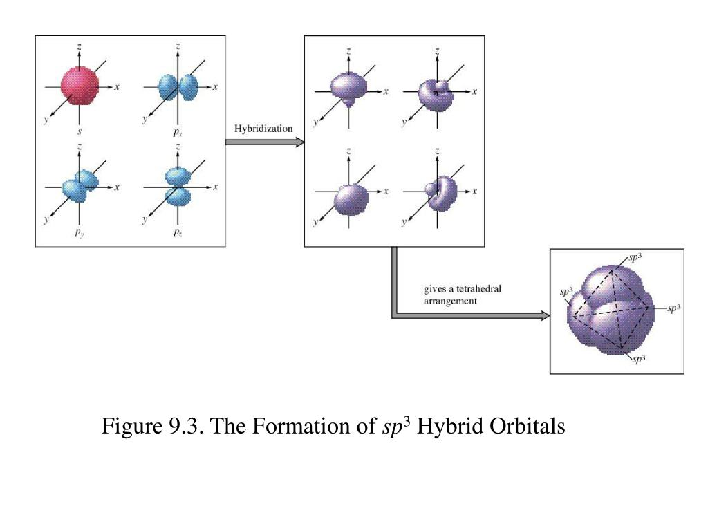 Figure 9.3. The Formation of