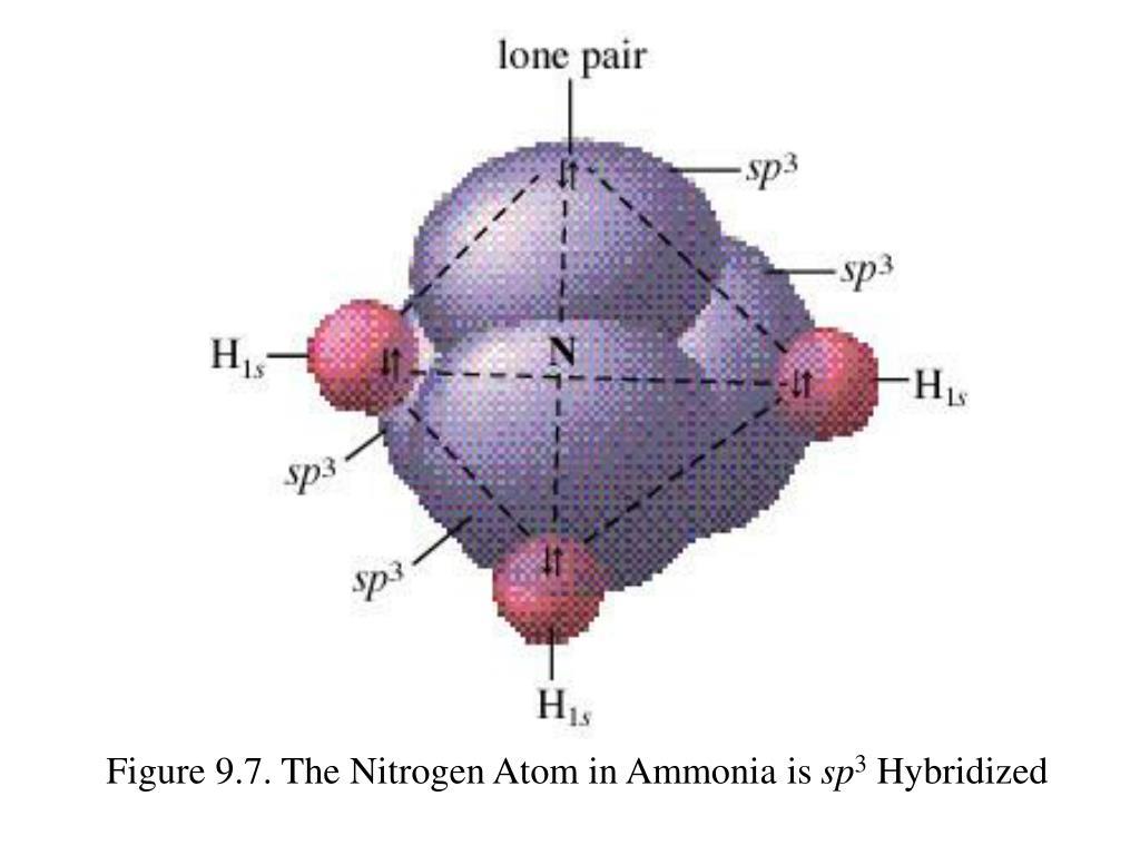 Figure 9.7. The Nitrogen Atom in Ammonia is