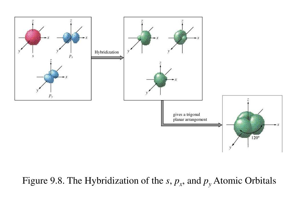 Figure 9.8. The Hybridization of the