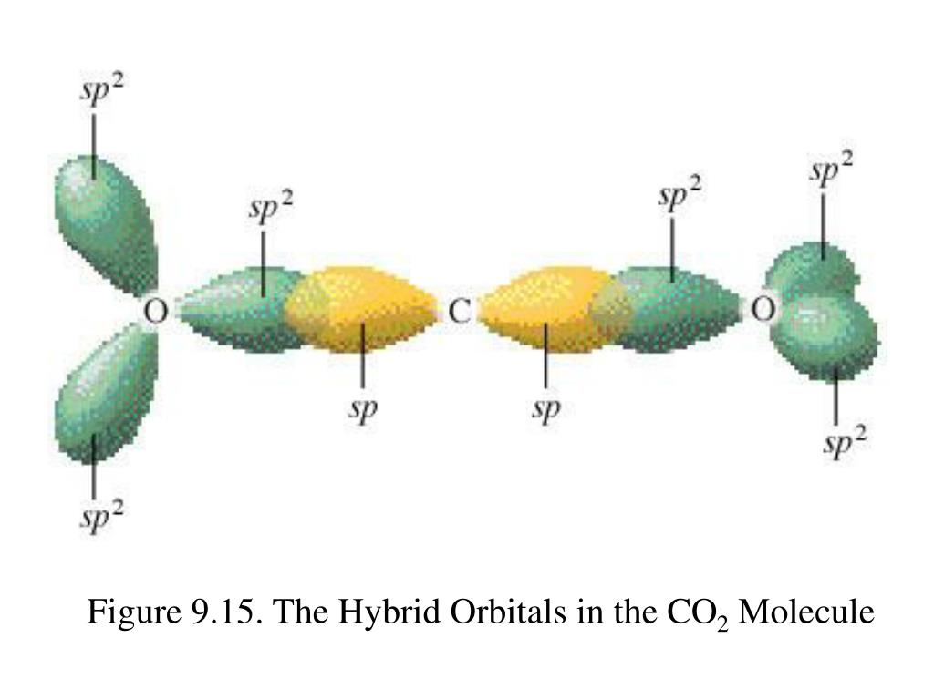 Figure 9.15. The Hybrid Orbitals in the CO