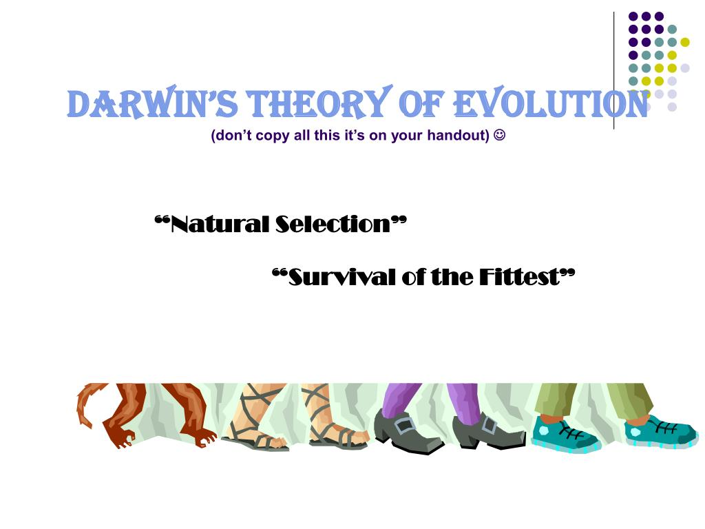darwin s theory of evolution Did you know that for 21 years darwin kept his theory secret learn more about this brilliant observer of nature and how he transformed our understanding of the living world darwin's theory of evolution by natural selection underlies all modern biology.
