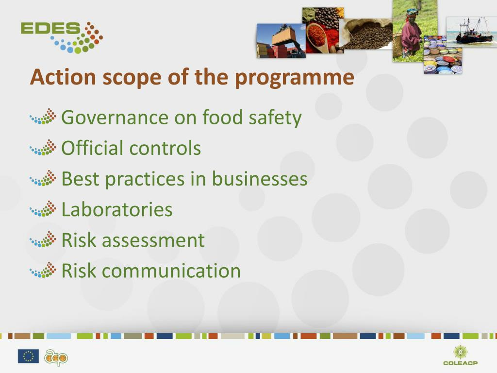 Action scope of the programme