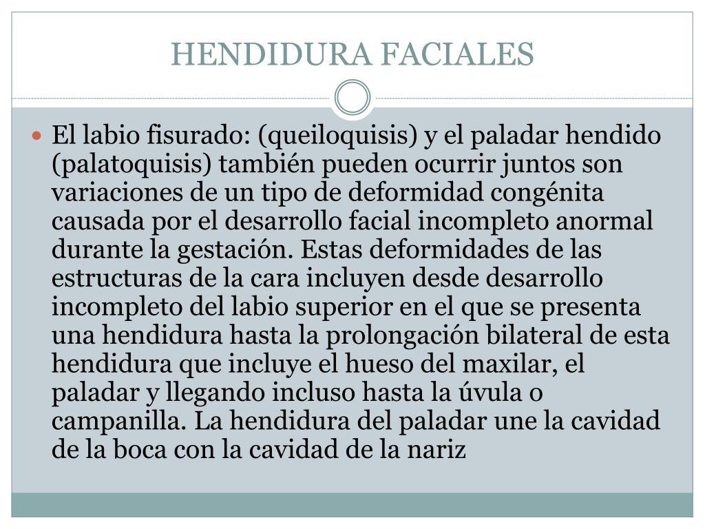 HENDIDURA FACIALES