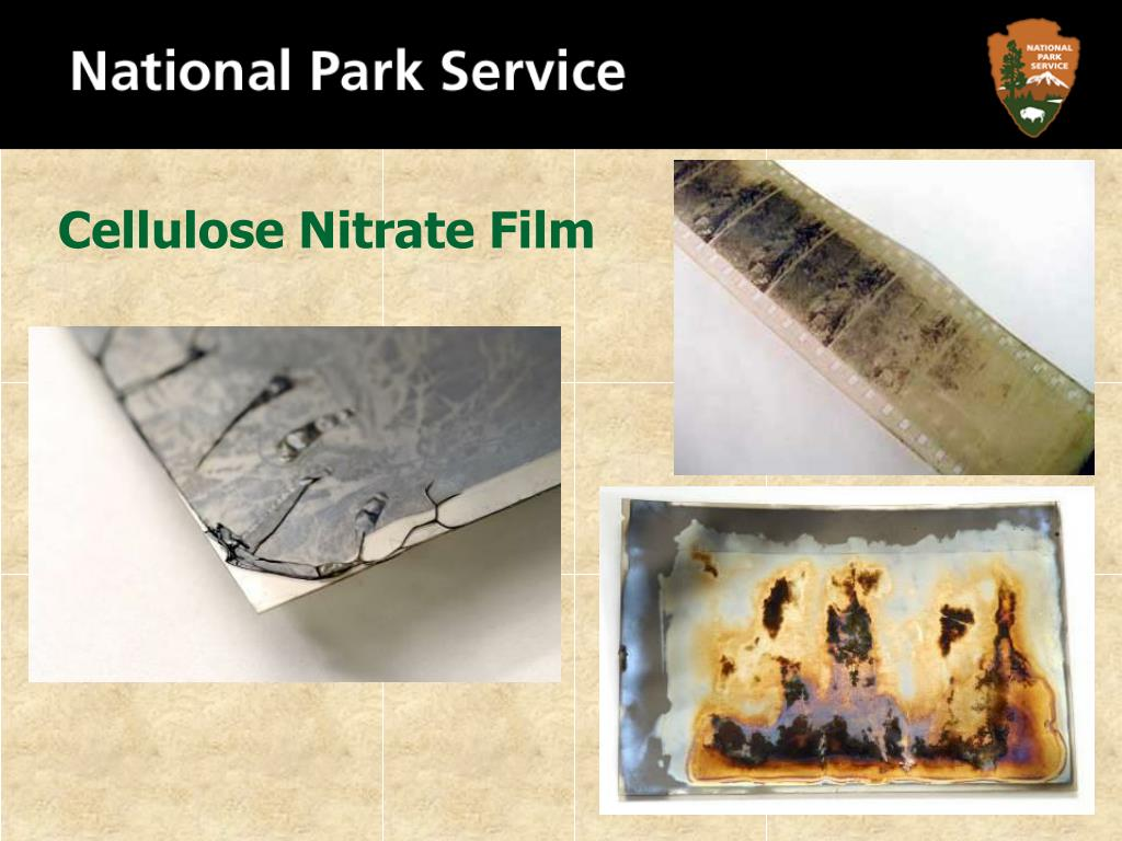 Cellulose Nitrate Film
