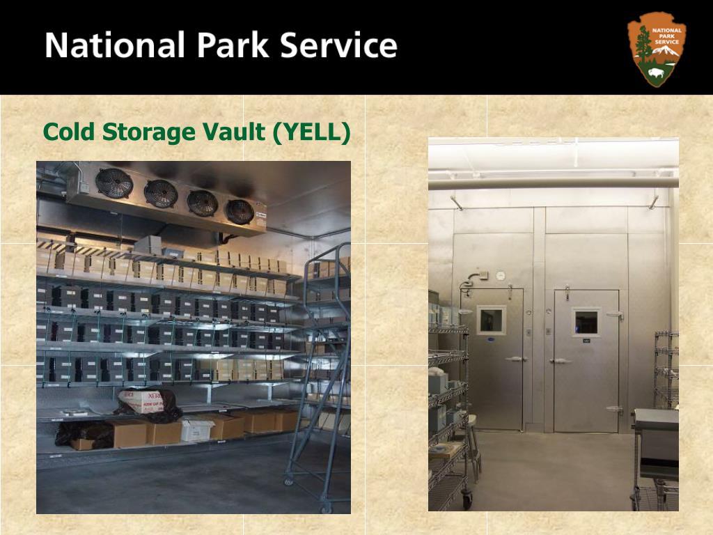 Cold Storage Vault (YELL)