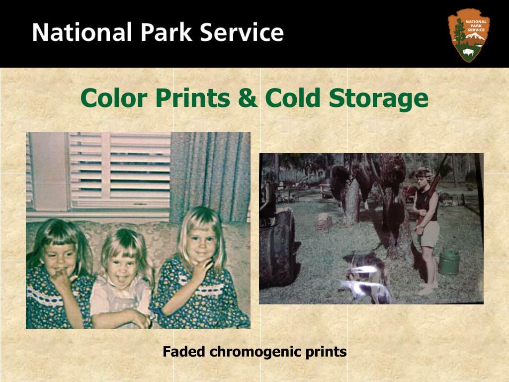 Color Prints & Cold Storage