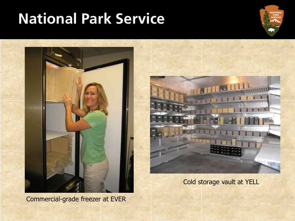 Cold storage vault at YELL
