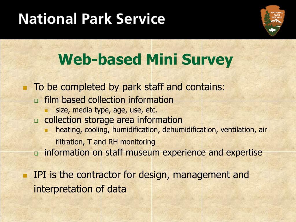 Web-based Mini Survey