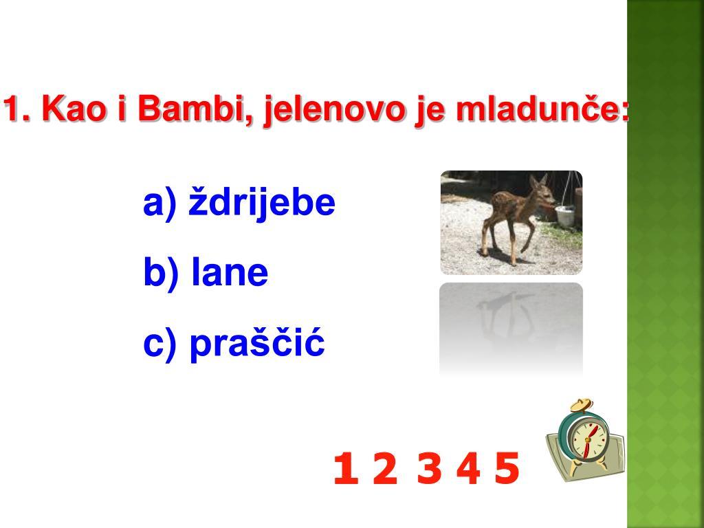 1. Kao i Bambi,