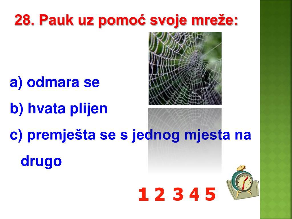 28. Pauk uz pomoć svoje mreže: