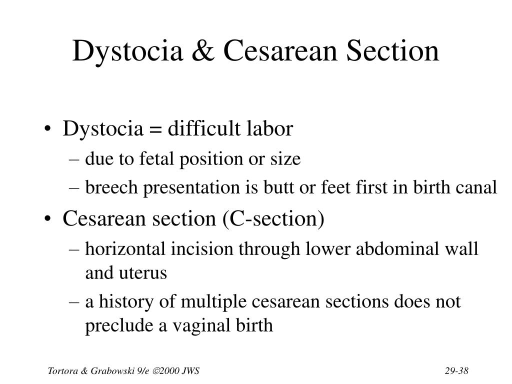 Dystocia & Cesarean Section
