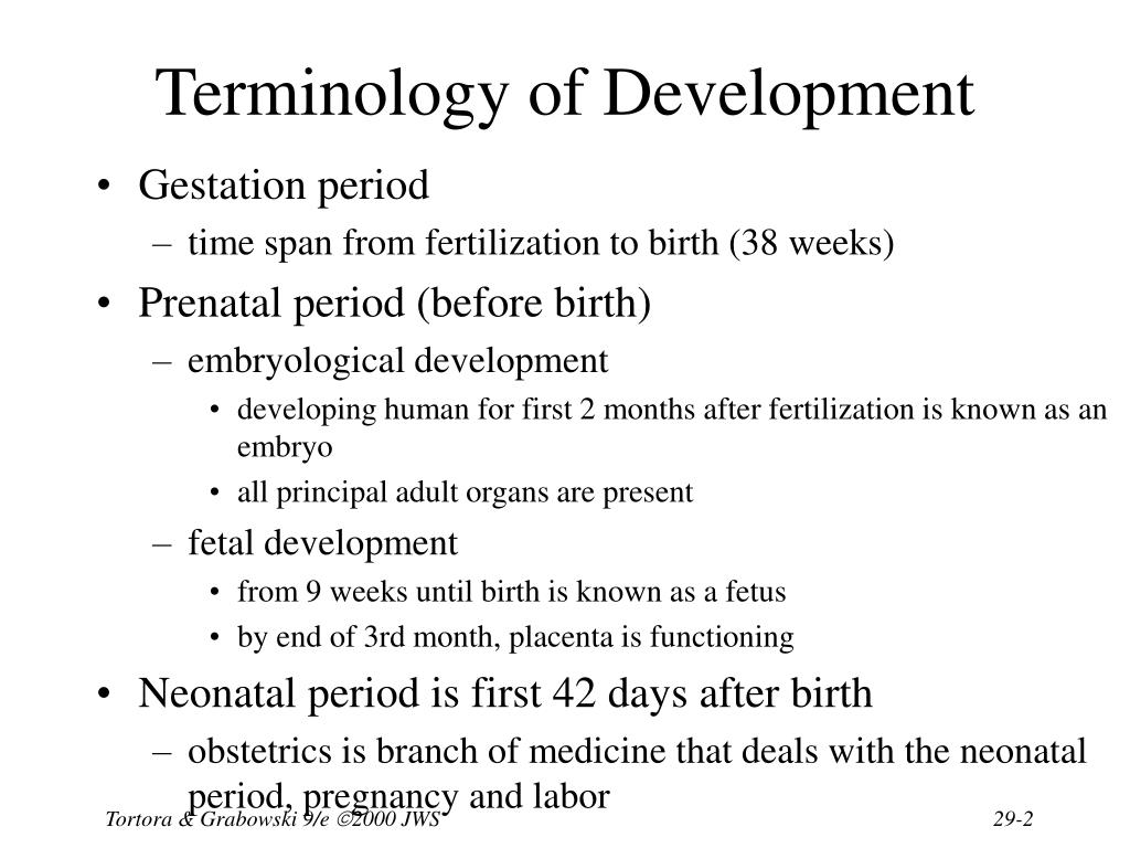 Terminology of Development