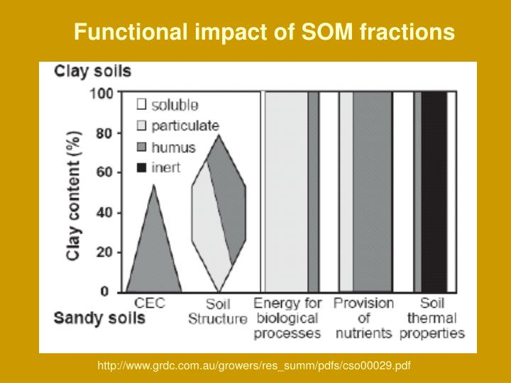 Functional impact of SOM fractions
