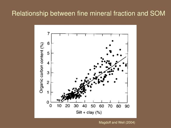 Relationship between fine mineral fraction and SOM