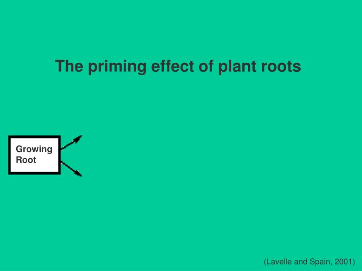 The priming effect of plant roots